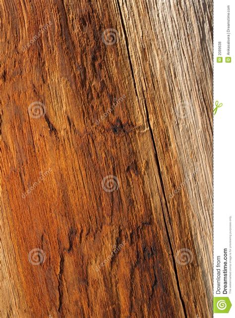 top 28 warm wood colors warm paint color wood pictures to pin on pinterest pinsdaddy