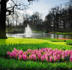 World Largest Flower Garden Discover And Save Creative Ideas