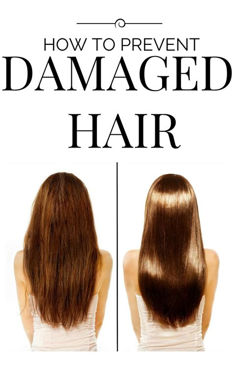 What Can I Do To Stop Hair From Shedding by How To Prevent Damaged Hair Lifestyle