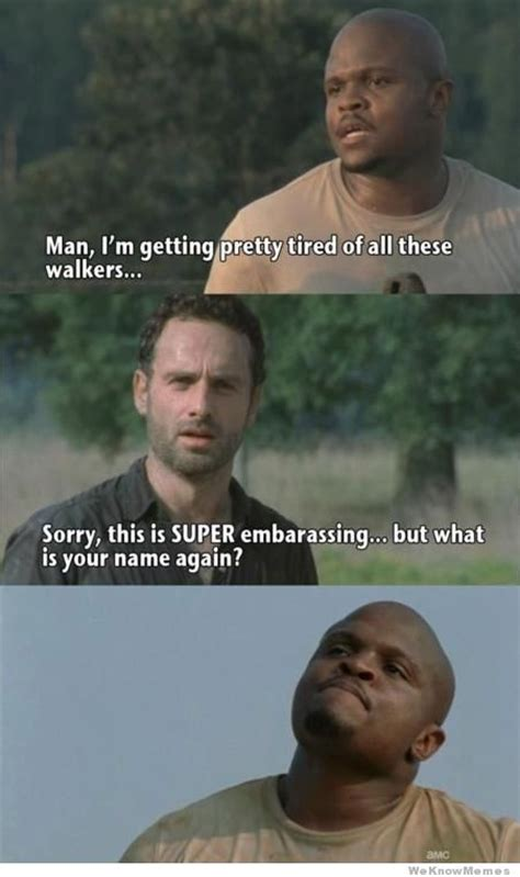 Meme Walking Dead - best of the walking dead memes weknowmemes