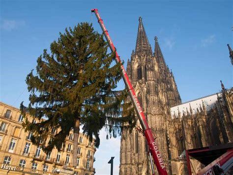 alle infos zum weihnachtsmarkt am k 246 lner dom citynews