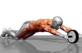 Fitness Wheel Roller Abs Alat Fitness Roda Per Baru entrenamiento para conseguir un abdomen perfecto