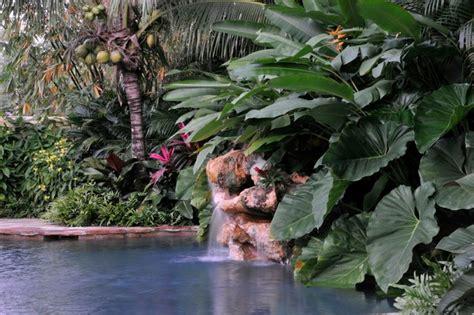 Tropical Landscape Garden Design Miami Knoll Landscape | tropical design tropical landscape miami by knoll