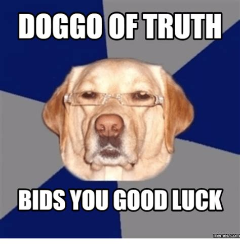 Good Memes - good luck animal meme www pixshark com images