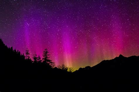 deneve aurora borealis night light aurora borealis northern lights 183 free photo on pixabay