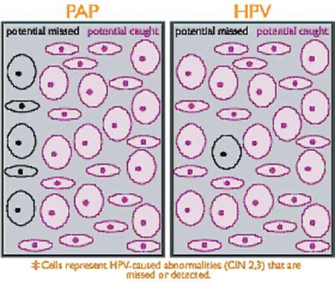 papilloma virus pap test digene hpv test related keywords digene hpv test