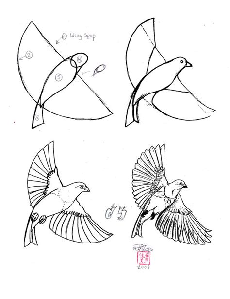 how to draw doodle birds how to draw a bird image search results