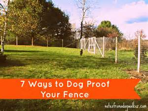 how to keep in yard without fence peace in the yard 7 ways to dog proof your fence notes