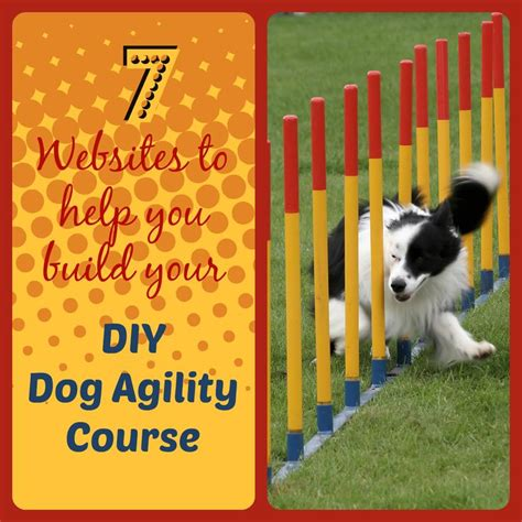 diy agility course the 32 best images about agility mats on daycare trainers and