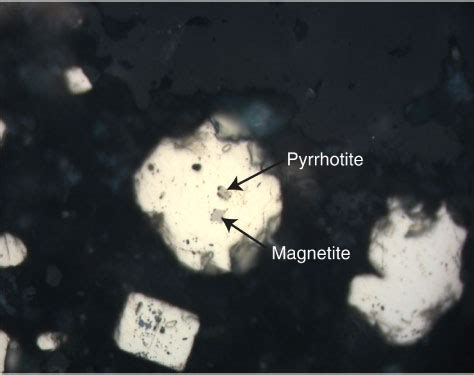 pyrite thin section figure f82 inclusions of pyrrhotite and magnetite in