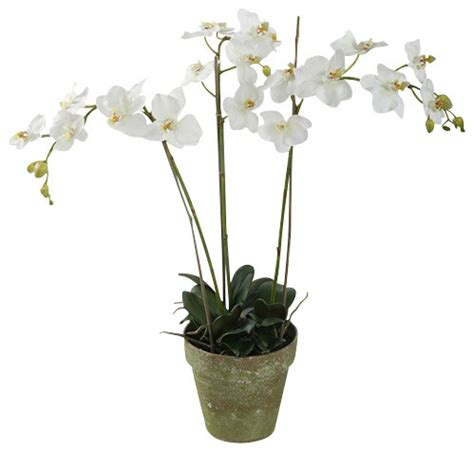 artificial orchids phalaenopsis orchids in pot 3 stems white traditional artificial flowers plants and trees