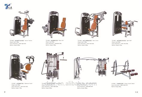 Abs Bench Exercises Arm Workout Machines At The Gym Most Popular Workout