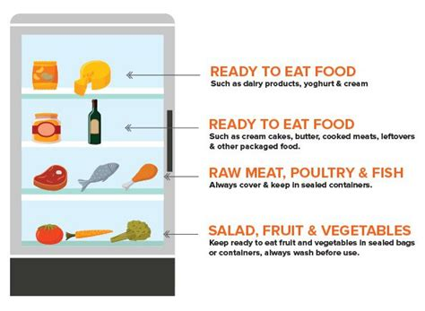 fridge layout poster where to store food in a fridge diagram organization