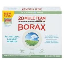 borax bed bugs stop fleas ticks mites bed bugs house dog healthy tips
