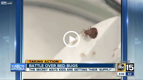 smoking bed bugs kids are smoking bed bugs to get high