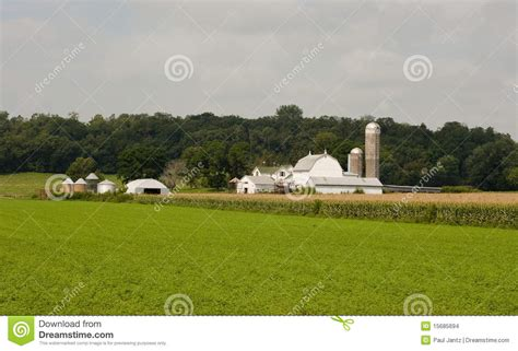 Small Diary small midwest dairy farm stock images image 15685694