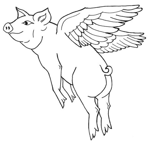 flying pig drawing www pixshark com images galleries