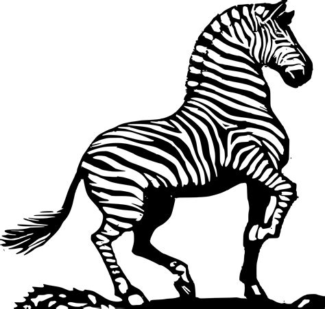 zebra pattern clipart zebra clip art black and white clipart panda free