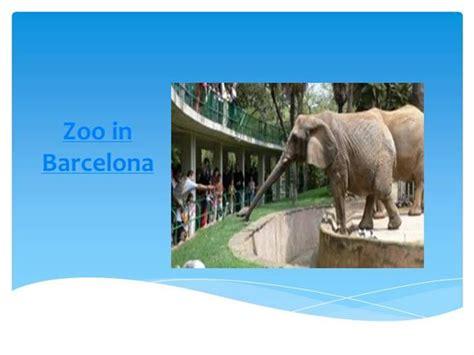 powerpoint templates zoo zoo in barcelona authorstream