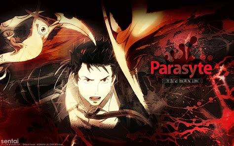 wallpaper anime parasyte parasyte the maxim hd wallpaper wallpapersafari