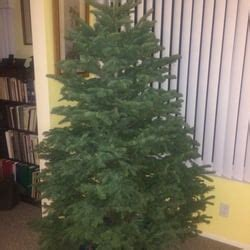 delancey street christmas trees 18 reviews christmas