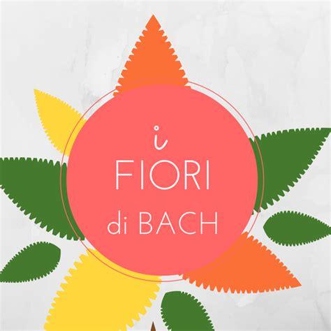 fiori di bach per autostima i fiori di bach e il loro uso