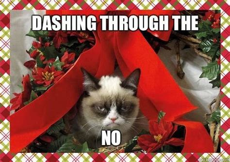 I Hate Christmas Meme - the best of grumpy cat s christmas smosh