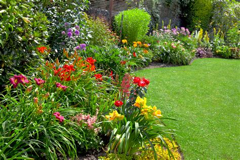 pictures of a garden garden images reverse search
