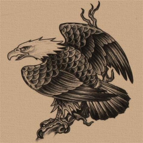 eagle tattoo designs free free eagle tattoo designs eagles pinterest eagle
