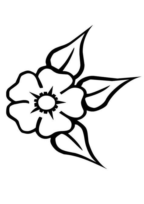 dibujos realistas a lapiz de flores imagenes de flores para colorear y dibujar