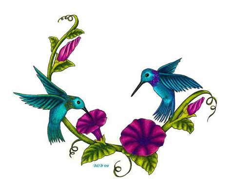 hummingbird graphics bing images projects pinterest