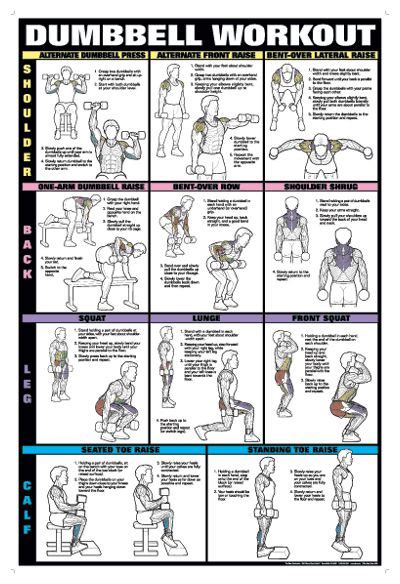 25 best ideas about dumbbell workout on pinterest