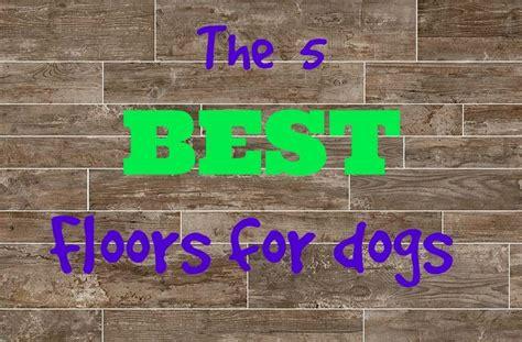 Best Flooring For Pets 25 Best Best Flooring Trending Ideas On Best Kitchen Flooring Best Wood Flooring