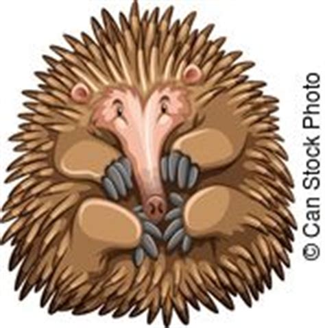 echidna clipart echidna vector clipart illustrations zoek onder 119