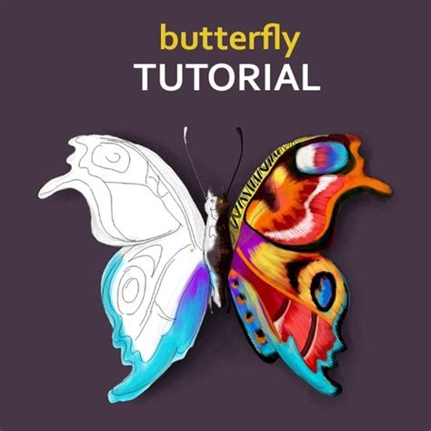 tutorial picsart drawing learn to draw a butterfly following picsart step by step