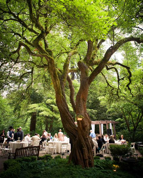 botanical gardens wedding venue 18 beautiful botanical garden wedding venues martha