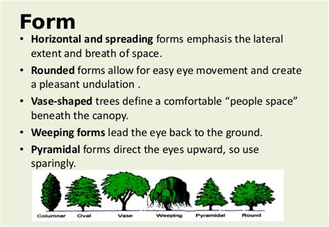 Visual Landscape Definition Al R Arboriculture