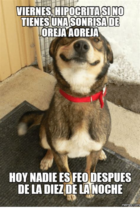 imagenes hoy es viernes de 25 best memes about imagen hoy es viernes imagen hoy es