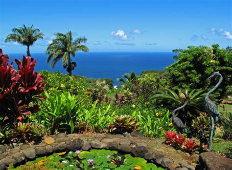 Botanical Gardens Hawaii Stylish Botanical Gardens Oahu Here Are The 16 Most Beautiful Gardens Youll See In Hawaii