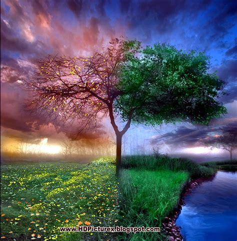 wallpaper hd free download 2014 free download romantic hd wallpapers 2014 full hd nature