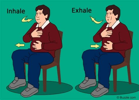 diaphragmatic breathing reduces low back permar physical therapy permar physical therapy