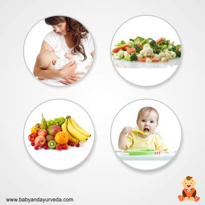 how many times should i feed my which solid foods should i feed my baby baby and ayurveda