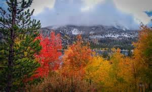 mono county fall colors california fall color 187 mono county