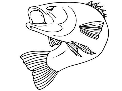 1000 ideas about bass fish cake on pinterest fishing