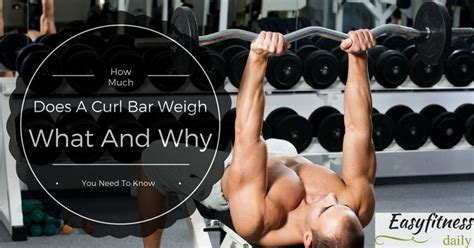 how much does the bar weigh bench press how much does the bar weigh on a bench press 28 images