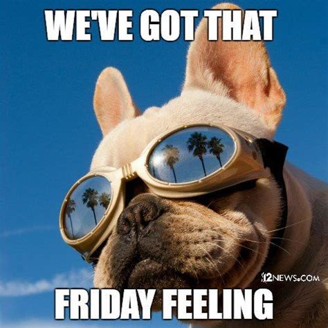 Good Friday Meme - 12 best ideas about happy friday on pinterest its the