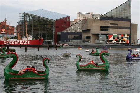 paddle boats baltimore md baltimore aquarium in background maryland paddle boat