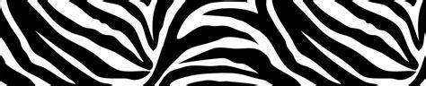 black and white zebra print wallpaper border go wild black white zebra print wall pops wall border