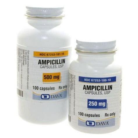 azithromycin for dogs icillin