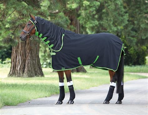 shires horse rugs roselawnlutheran